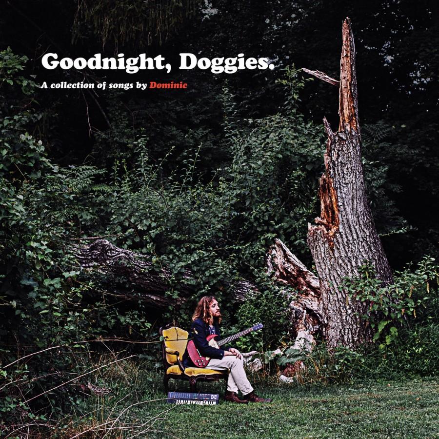 Goodnight, Doggies