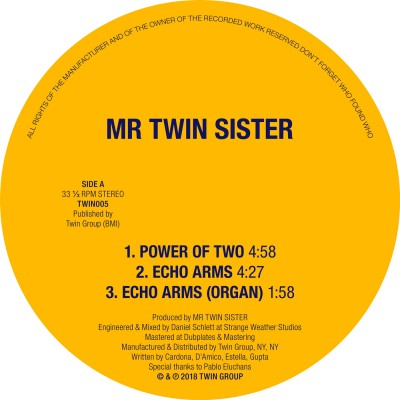 Power of Two/Echo Arms 12""