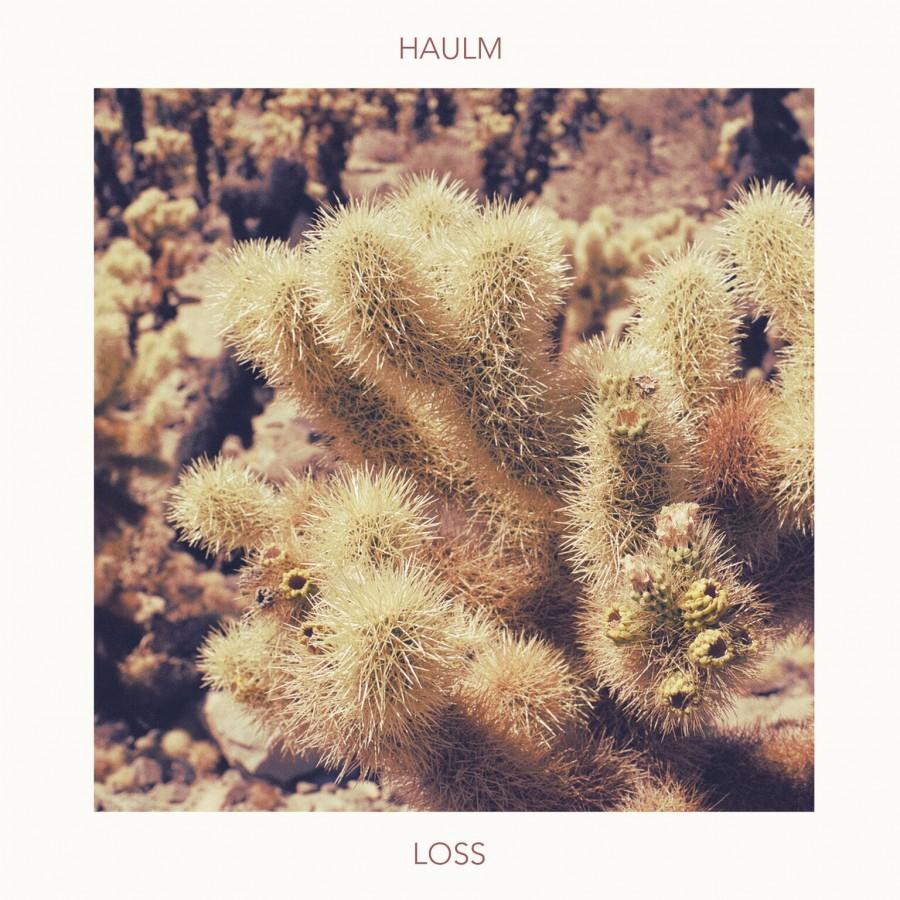Loss (Single)