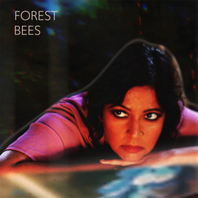 Forest Bees