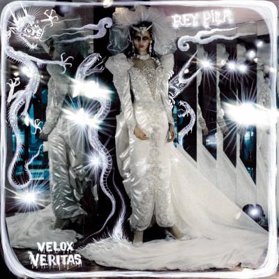 Velox Veritas