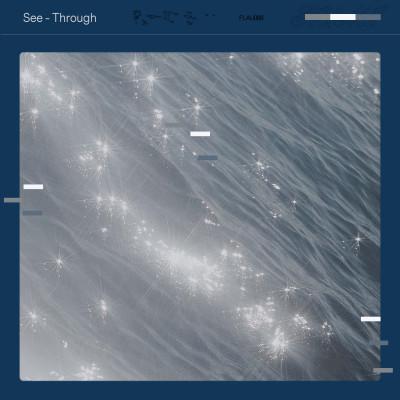 See-Through