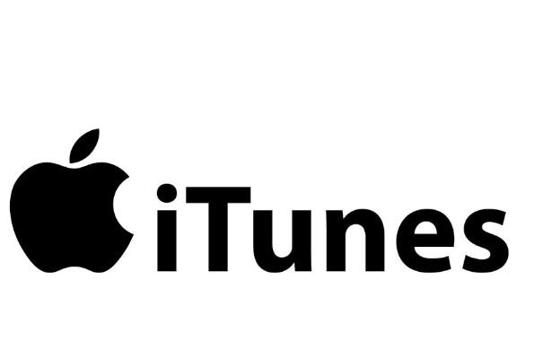 Take My Wife (iTunes)